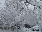 KTÜ\'den kar manzaralar?...